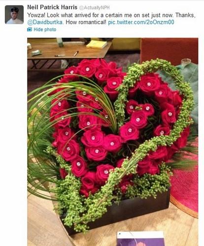 A bouquet for Neil ♥