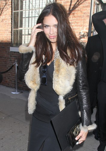 Adriana Lima attends the Donna Karan প্রদর্শনী during Fashion Week in New York, Feb. 13, 2012