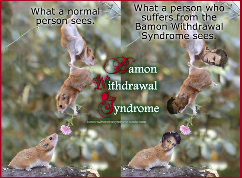 BAMON WITHDRAWAL SYNDROME A very dangerous syndrome.