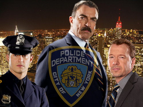 Blue Bloods (CBS) wallpaper possibly containing dress blues, regimentals, and a business suit titled Blue Bloods Shield