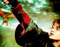 Harry James Potter - harry-potter photo