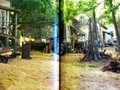 Katniss's house in the middle