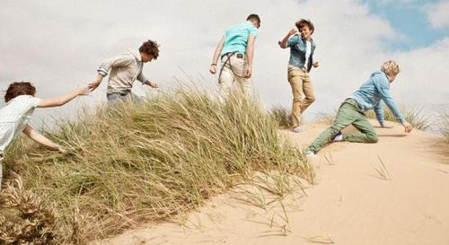 One Direction wallpaper with a grainfield called Love 1D FOREVER !!! X ♥