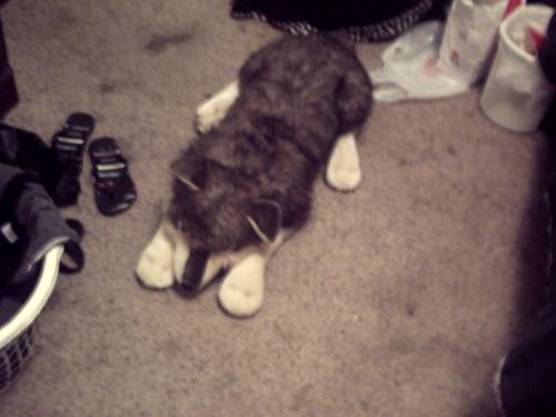 My Humphrey doll