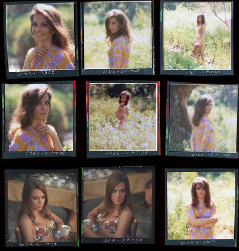 natalie wood wallpaper probably with a stained glass window called Natalie's photoshoot 1