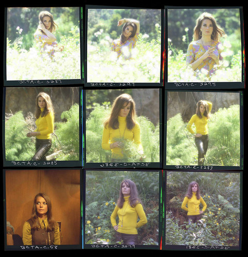 Natalie's photoshoot 3