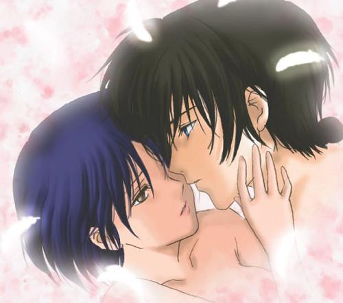 Ranma 1/2 Ranma Saotome and Akane Tendo_ amor