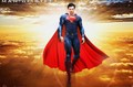 SUPERMAN TOM WELLING - superman photo