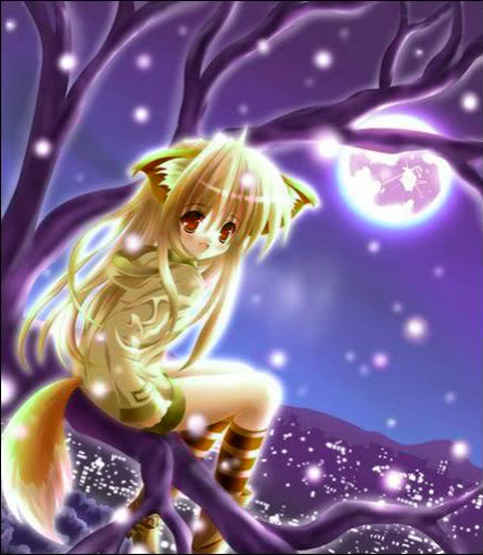 Wolf Anime Msyugioh123 Photo 29086903 Fanpop