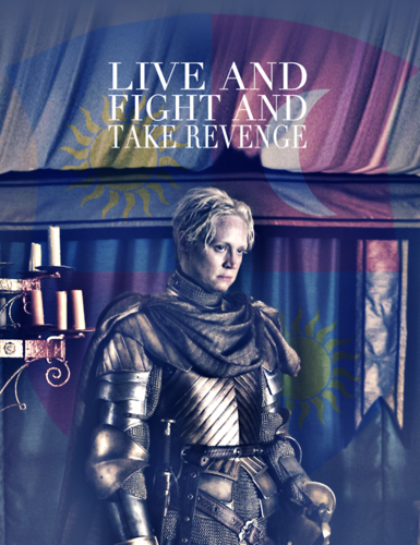 Game of Thrones wallpaper probably with a sign, a hip boot, and a tabard entitled Brienne of Tarth