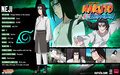 naruto-shippuuden - informations wallpaper