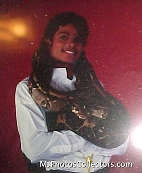 Michael Jackson images michael wallpaper and background photos