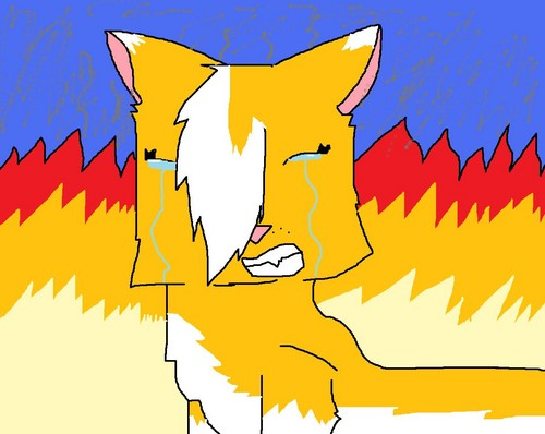 squirrelflight in fire!!!!!!!!!!!!!!!!!!!!!!!!!!!!! : D