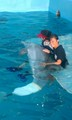  Winter - dolphin-tale photo