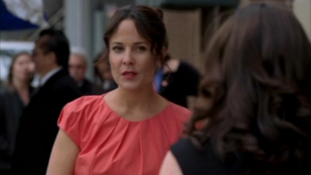 1x19- A Dozen Red mga rosas