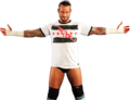 Best In The World - cm-punk photo