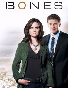 Temperance Brennan karatasi la kupamba ukuta with a business suit, a suit, and a three piece suit entitled Bones and Booth poster