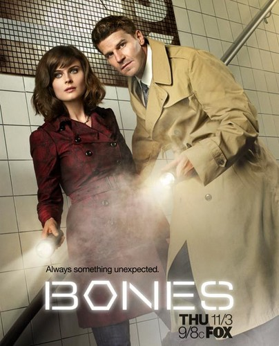 BONES(ボーンズ)-骨は語る- and Booth poster