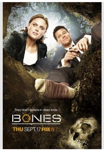 Temperance Brennan karatasi la kupamba ukuta with a portrait entitled Bones and Booth poster