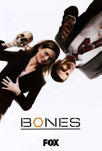 Temperance Brennan پیپر وال entitled Bones and Booth poster
