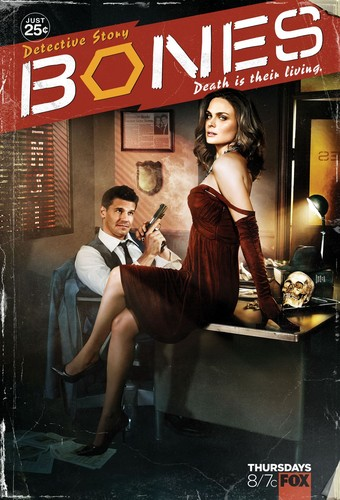 Temperance Brennan wallpaper probably with a diner entitled Bones and Booth poster