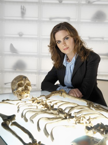 Temperance Brennan wallpaper called Bones