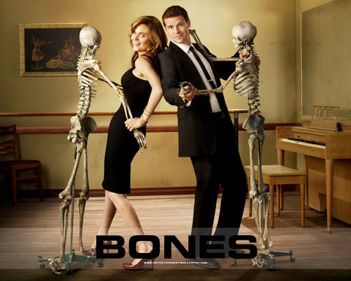 Temperance Brennan karatasi la kupamba ukuta entitled Booth and Bones