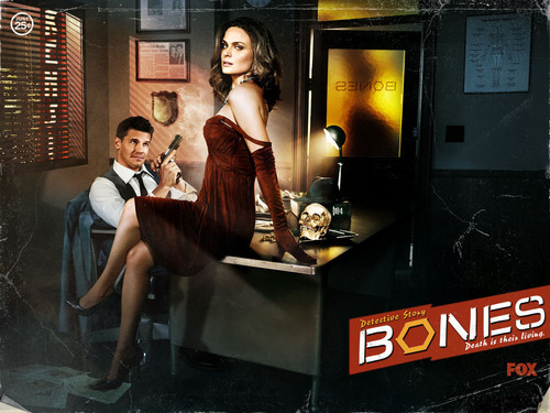 Temperance Brennan karatasi la kupamba ukuta probably with a diner, a sign, and a drawing room called Booth and Bones