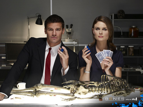 Booth and Bones wallpapers - temperance-brennan Wallpaper