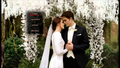Breaking Dawn- DVD - twilight-series photo