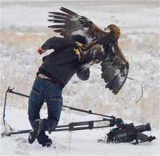 Cameraman Attack
