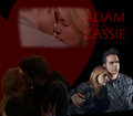 Cassie and Adam - the-secret-circle-couples fan art
