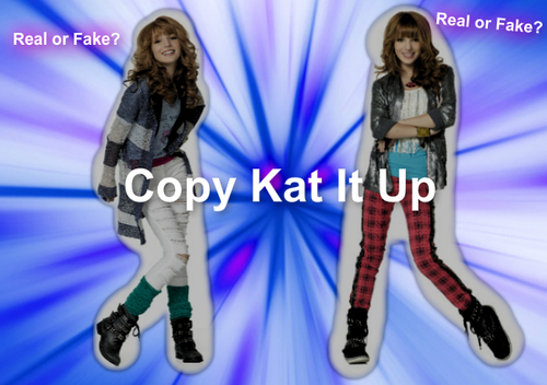 Copy Kat It Up! - shake-it-up Photo