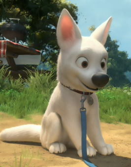 Disney's Bolt wallpaper possibly containing a chihuahua called Cute Bolt