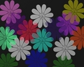 Dizzy Daisies - bright-colors wallpaper