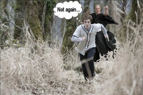 Edward and Voldemort