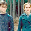 Harry and Hermione photo probably containing a shirtwaist entitled Harmony ♥