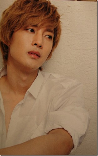 Kim Hyun Joong wallpaper probably containing a portrait titled Kim Hyun Joong