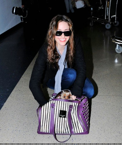 LAX Airport - February 17