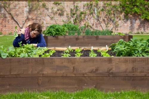 Lisa gardening