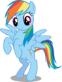 Rainbow Dash standing on two legs