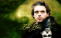 Robb Stark Wallpaper