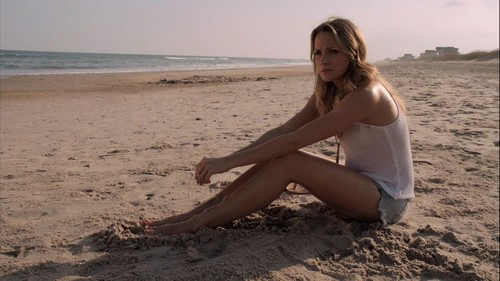 Shantel VanSanten দেওয়ালপত্র probably with a bikini and skin called Shantel