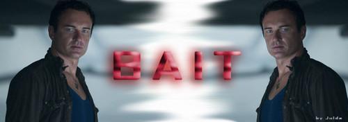 bait banner