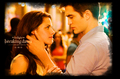 bella and edward - the-cullens photo