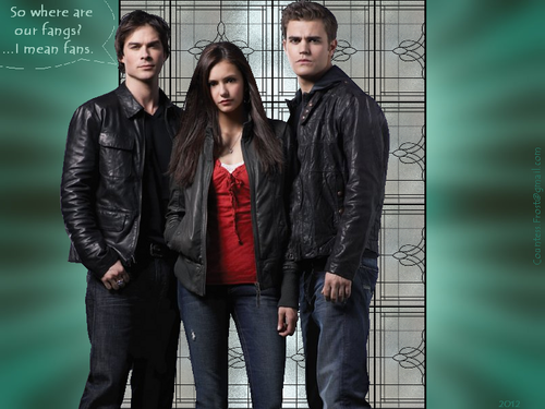 where are our fangs? - the-vampire-diaries-tv-show Wallpaper