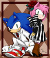 .:Sonic and Amy:.