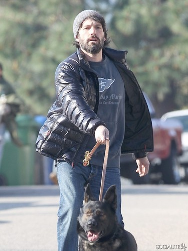 Ben Affleck Tries To Walk The Dog
