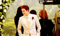 Breaking Dawn - the-volturi photo