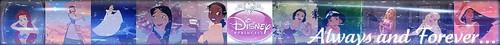 디즈니 Princess Banner